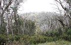 Description: Description: Description: Description: Description: Description: Description: Description: Description: D:\My Web Sites\TLCV\PhotoPage\2011-03-DaviesHighPlainAdventure\thumbs\11-Convoy shot climbing Mt Gibbo.JPG